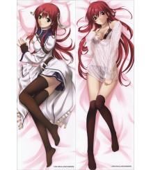 SM041 Seinarukana -The Spirit of Eternity Sword 2 - Setoki Nozomu ANIME DAKIMAKURA JAPANESE PILLOW COVER